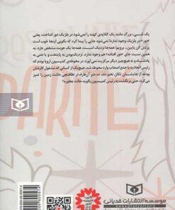 پشت جلد کتاب 976 روز در پسکوچههای اروپا